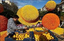 Фестиваль лимонов пройдет во Франции в 79-й раз