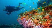 Мальдивы станут биосферным заповедником