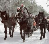 Покататься на лошадях и санях можно будет в московских парках