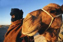 Обновленный Тунис ждет туристов