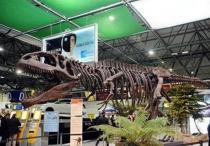 В аэропорту Турина появился гигантозавр