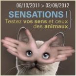 На выставке в Брюсселе можно узнать, что чувствуют животные