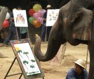 Искусство, созданное животными, можно увидеть в Лондоне