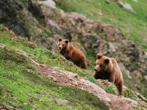 Экологические маршруты - в Байкальском заповеднике