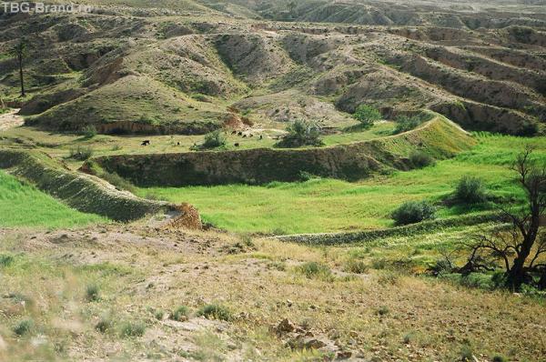 Окрестности Матматы - по дороге в Сахару