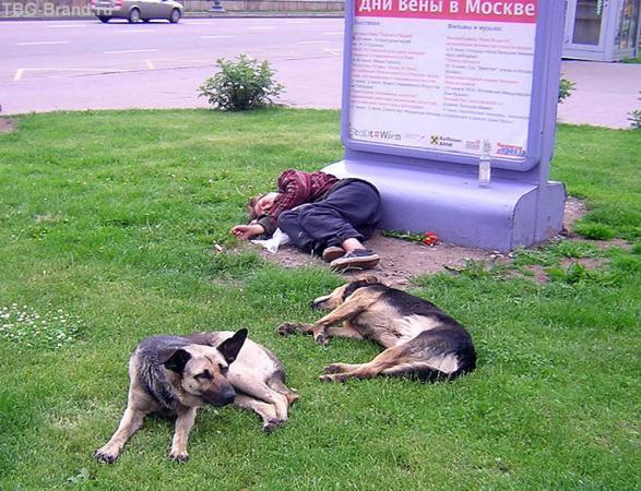 Дни Вены в Москве (фото моего друга, просто оч понравилось)