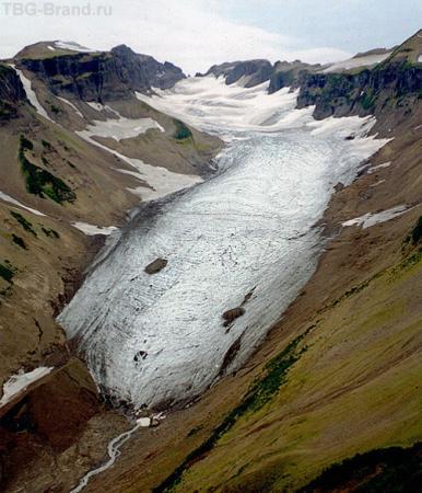Ледник Августы