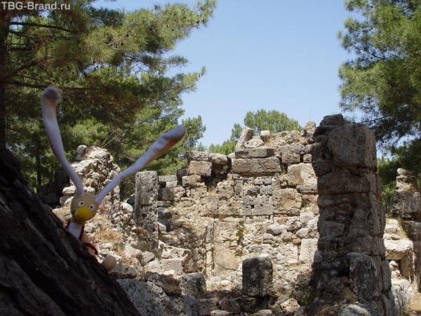 Вовчик на развалинах Фазелиса