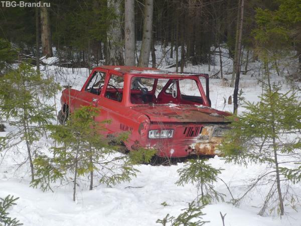 По дороге в лесу. Как он туда попал?