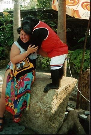любвеобильный шимпанзе