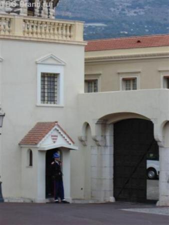 Страж дворца