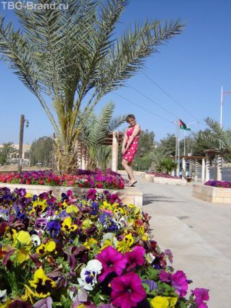 Иордания - цветущая страна