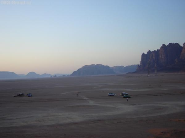 Пустыня просыпается...