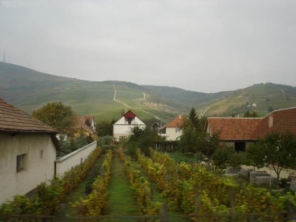 Венгрия, регион Токай