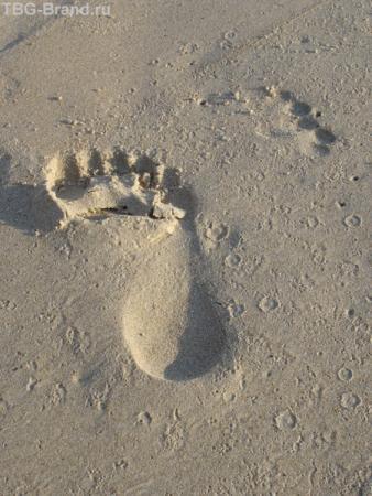 След, просто след на песке