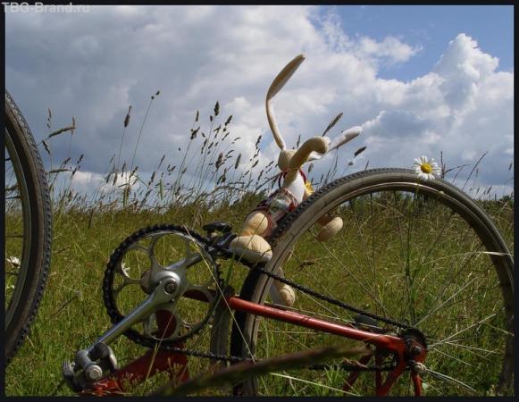 Я буду долго гнать велосипед))