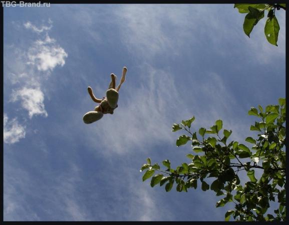 И он взлетал.. высоко -высоко..
