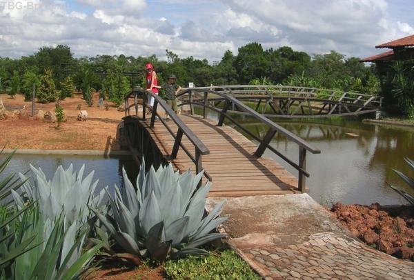 мост в происторию флоры
