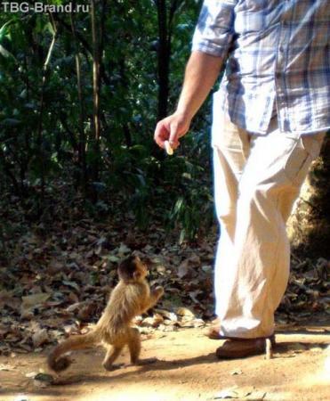 дядь, ну давай уже свою бараночку!