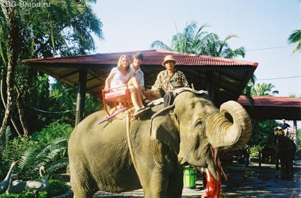 Катаемся на слоне по джунглям