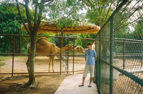 Зоопарк, Паттайя