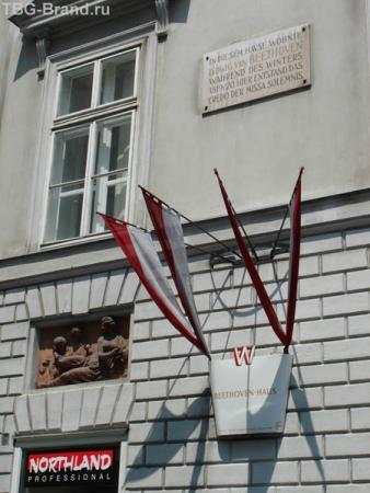 В этом доме несколько лет жил Бетховен