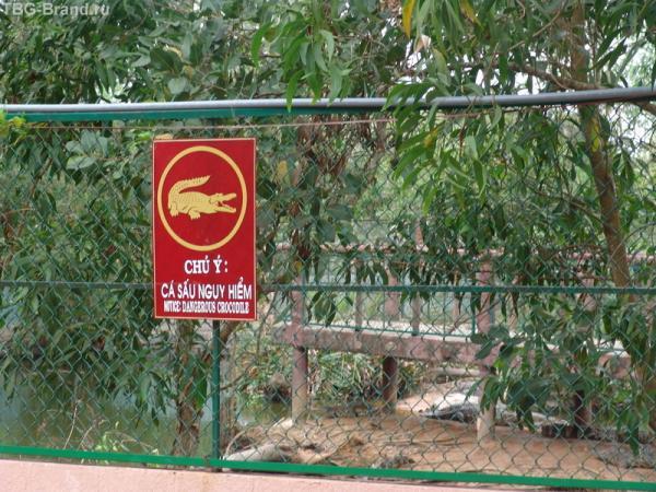 Осторожно крокодилы