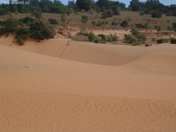 Красные дюны2