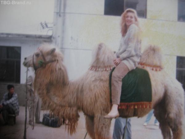 В Китае верблюд не средство передвижения, а роскошь