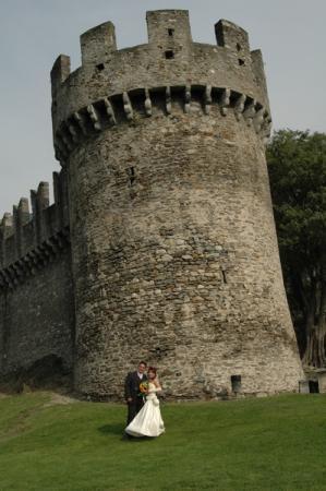 молодожены на фоне башни