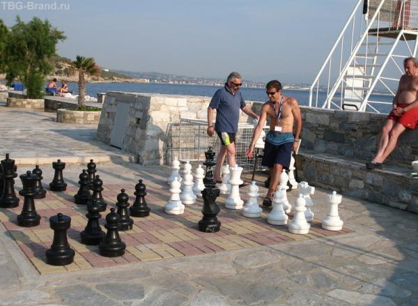 Шахматы для больших!