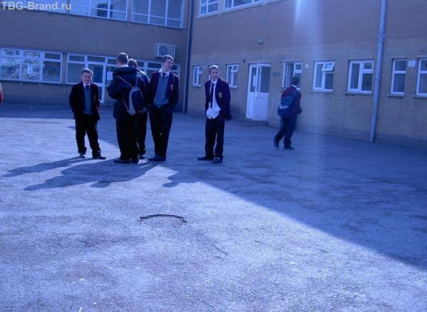 Балбесы не только в наших школах но и в британских