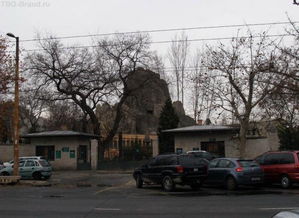В зоопарке Будапешта специально построили гору для горных коз