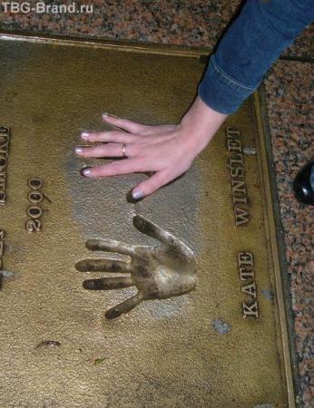 Моя рука совпадает с отпечатком руки Кейт Винслетт