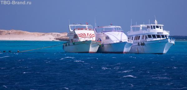 белые корабли пустыни
