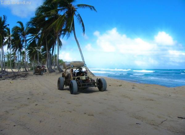 море,пальмы и пески...