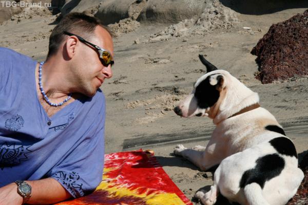 Собаки в Гоа всегда рядом с Вами...