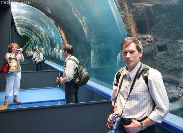Интересный эффект в аквариуме