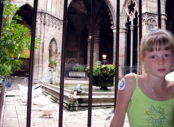 живые лебеди Кафедрального собора