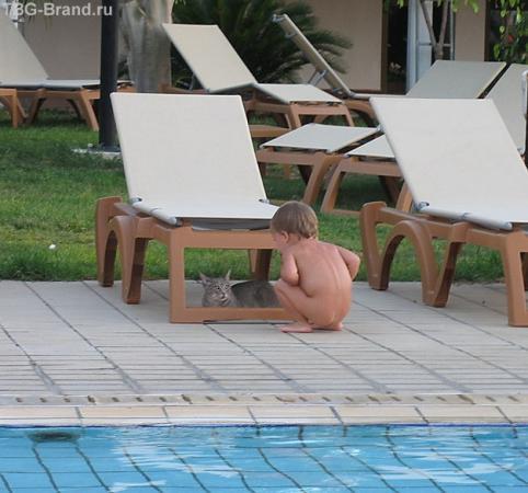 Кошка а ты тоже загорать пришла? А купаться пойдешь?
