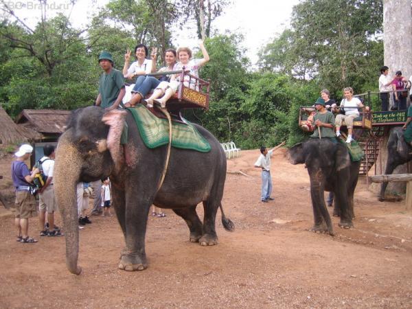 """""""Великий"""" слоновый  поход"""