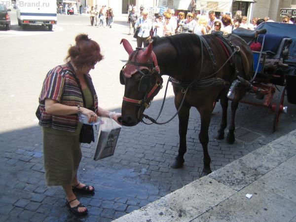 Пей, моя лошадка