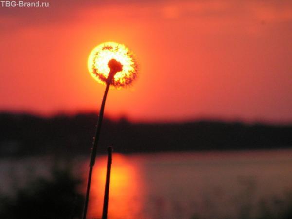 закат над Онего