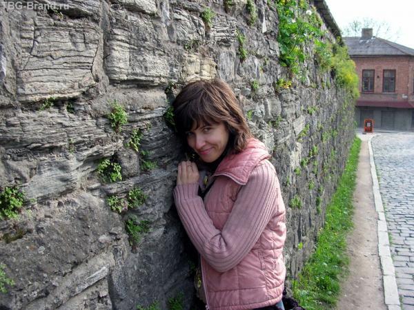 Чудесная старая стена замка