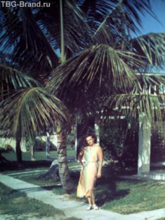 Под пальмами Варадеро