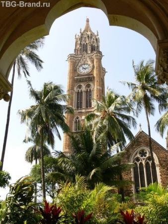 Университет Мумбая