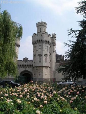 Брюссель, частный замок в центе