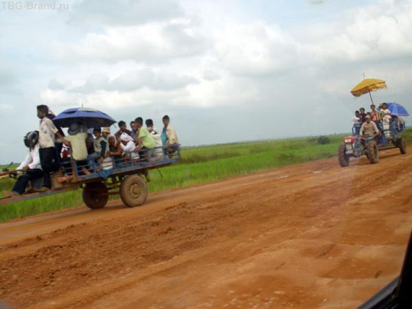 местный транспорт