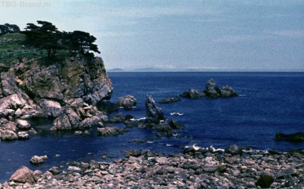 Побережье залива Петра Великого