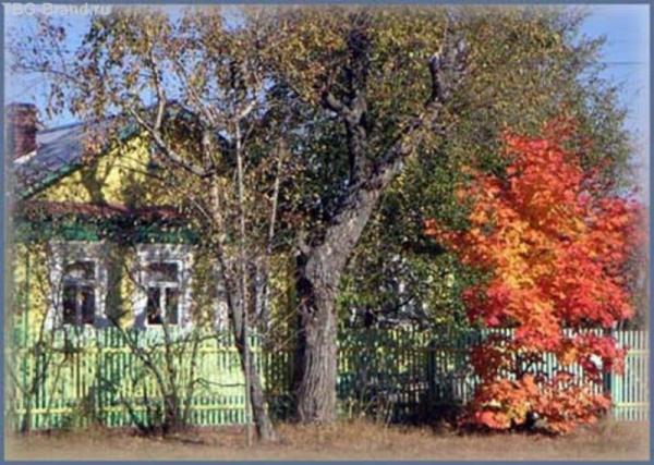 Осень в Омутищах